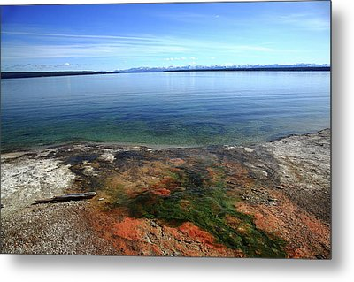 Metal Print featuring the photograph Yellowstone Lake Colors by Frank Romeo