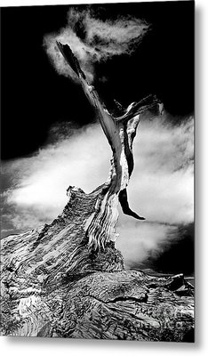 1000 Years To Create Metal Print by Paul W Faust -  Impressions of Light