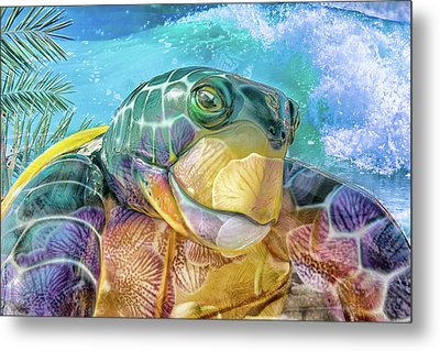 10730 Mr Tortoise Metal Print