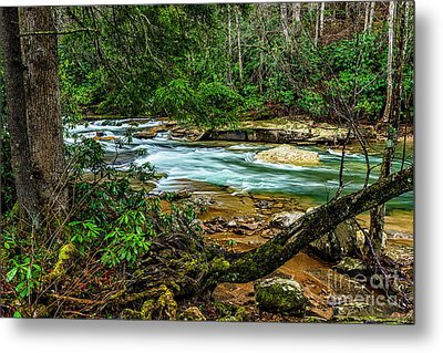 Metal Print featuring the photograph Back Fork Of Elk River by Thomas R Fletcher