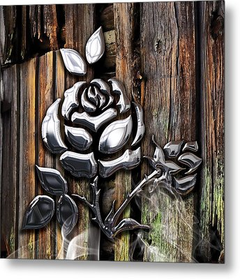 Rose Collection Metal Print