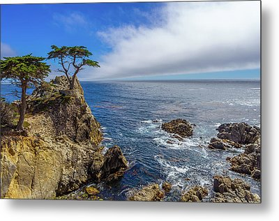 Metal Print featuring the photograph 17 Mile Drive Pebble Beach by Scott McGuire