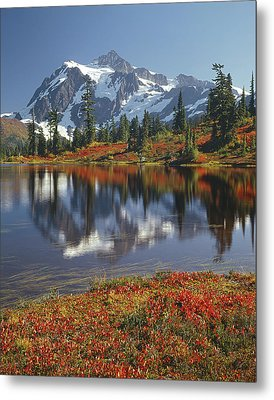 1m4208 Mt. Shuksan And Picture Lake Metal Print