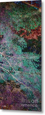 A Forest Of Magic Metal Print by Eena Bo