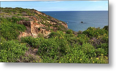 Metal Print featuring the photograph Above The Pacific by Cliff Wassmann