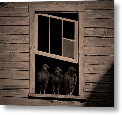 Almost Paneless Metal Print by Robert Geary
