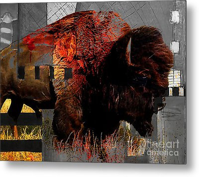 American Buffalo Collection Metal Print by Marvin Blaine