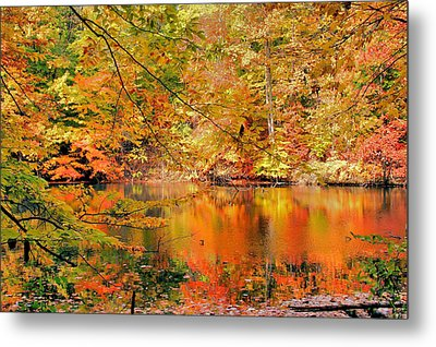 Autumn Reflections Metal Print by Kristin Elmquist