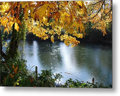 Metal Print featuring the photograph Autumn by Sergey and Svetlana Nassyrov