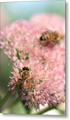 2 Bees Metal Print by Angela Rath