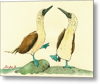 Blue Footed Boobies Metal Print