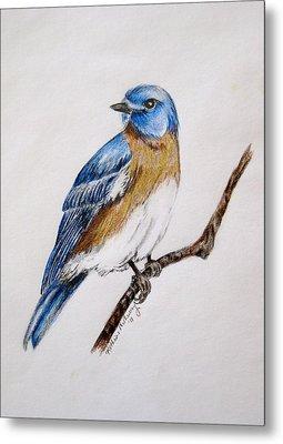Bluebird Guardian Metal Print