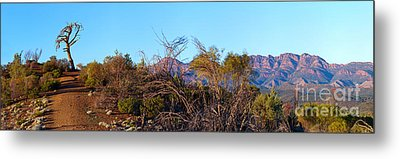 Metal Print featuring the photograph Bunyeroo Valley by Bill  Robinson