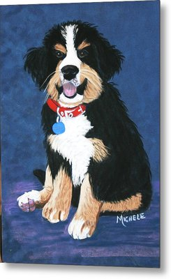 Burmese Mountain Pup Metal Print by Michele Turney