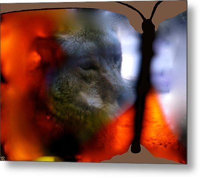 Butterfly Animals Collection  Metal Print by Debra     Vatalaro