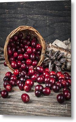 Cranberries In Basket Metal Print by Elena Elisseeva