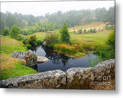 Creek Metal Print by Carlos Caetano