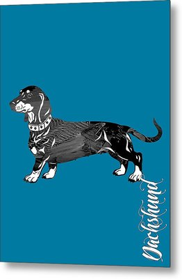 Dachshund Collection Metal Print by Marvin Blaine
