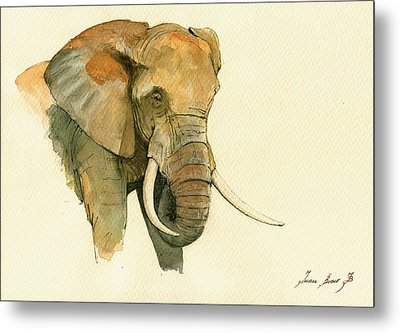 Elephant Painting           Metal Print by Juan  Bosco