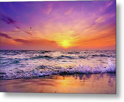 Metal Print featuring the photograph Evening Flight by Dmytro Korol