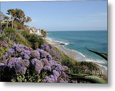 Flowers At The Beach Metal Print by Timothy OLeary