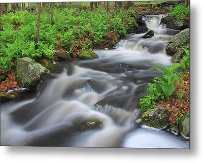 Forest Stream In Spring Metal Print by John Burk