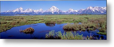 Grand Teton Park, Wyoming, Usa Metal Print by Panoramic Images