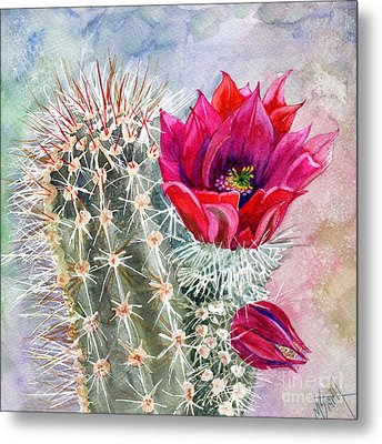 Hedgehog Cactus Metal Print by Marilyn Smith