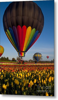 Hot Air Balloons Metal Print by Mandy Judson