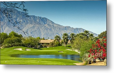 Palm Desert Golf Course Metal Print by David Zanzinger