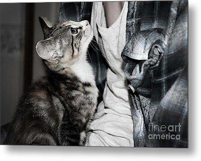 Photography Metal Print by Jayde Rowley