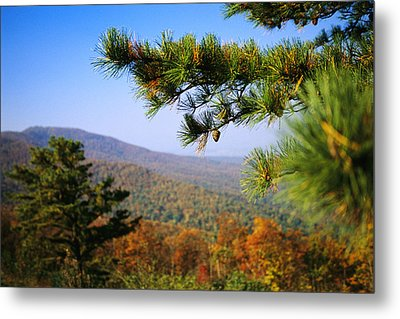 Pine Tree And Forested Ridges Metal Print by Raymond Gehman