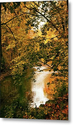 River Reflections Metal Print by Jessica Jenney