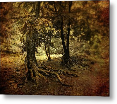 Rooted In Nature Metal Print by Jessica Jenney