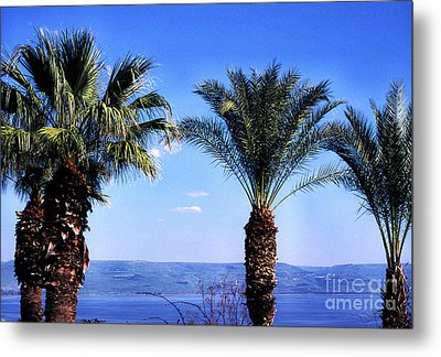 Sea Of Galilee From  Mount Of The Beatitudes Metal Print by Thomas R Fletcher