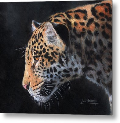 Metal Print featuring the painting South American Jaguar by David Stribbling