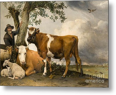The Bull Metal Print by Paulus Potter