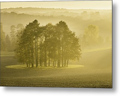 The Downs Metal Print by Ian Hufton