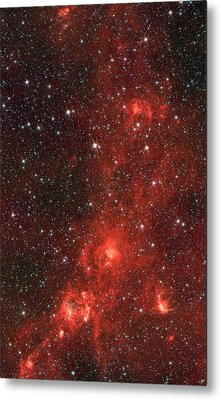 The Dragon Fish Nebula Metal Print by American School