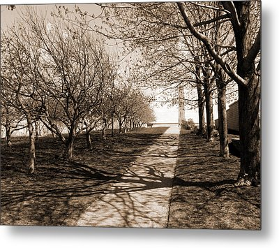 The Path Metal Print by Robert Knight