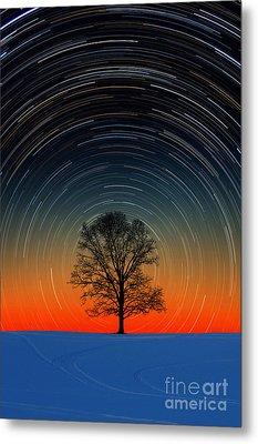 Tree With Star Trails Metal Print by Larry Landolfi