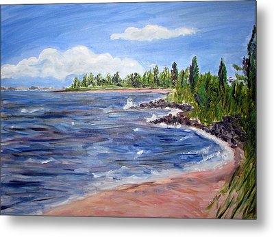 Trixies Cove Metal Print