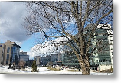 Umass Medical Center Metal Print by Rose Wang