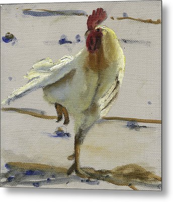 White Rooster Metal Print by John Reynolds