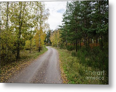 Metal Print featuring the photograph Winding Gravel Road by Kennerth and Birgitta Kullman