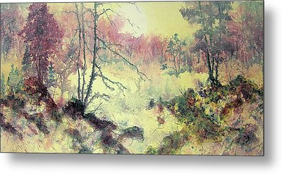 Woods And Wetlands Metal Print by Carolyn Rosenberger