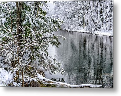 Metal Print featuring the photograph Winter Along Cranberry River by Thomas R Fletcher