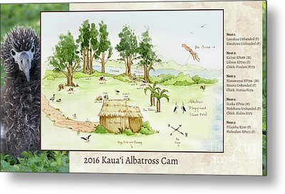 2016 Kauai Albatross Cam Map Metal Print by Elizabeth Smith