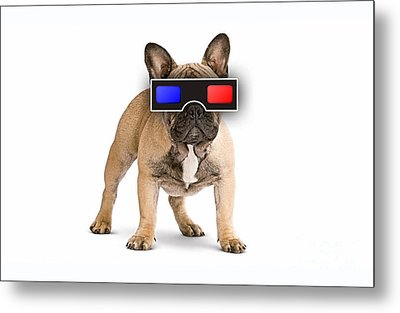 3d Dog Collection Metal Print by Marvin Blaine