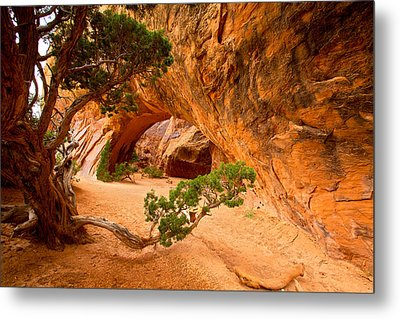 Metal Print featuring the photograph Arches by Evgeny Vasenev